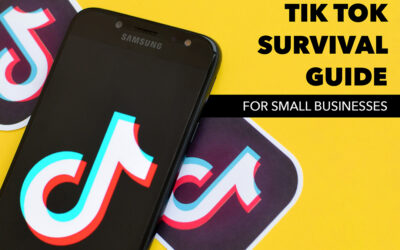 TikTok Survival Guide for Small Business
